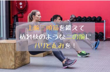 太るための筋トレ【ペラペラな二の腕を引き締めたい!】