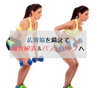 太るための筋トレ【広背筋を鍛えて猫背解消&バストアップ】