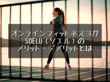 SOELU(ソエル)のメリットとデメリットを解説